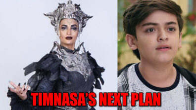 Baalveer Returns: Timnasa to disguise for Vivaan's birthday party