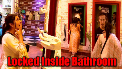 Bigg Boss 13: Sidharth Shukla and Shefali Jariwala locked inside bathroom, Shehnaaz jealous