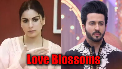 Kundali Bhagya: Love blossoms for Karan and Preeta?