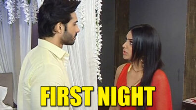 Naagin – Bhagya Ka Zehreela Khel: Dev and Brinda's first night