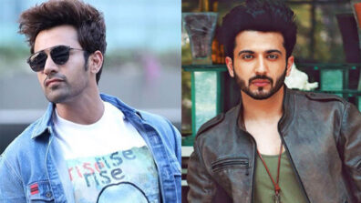 Pearl V Puri vs Dheeraj Dhoopar: Who is the hottest Television star?