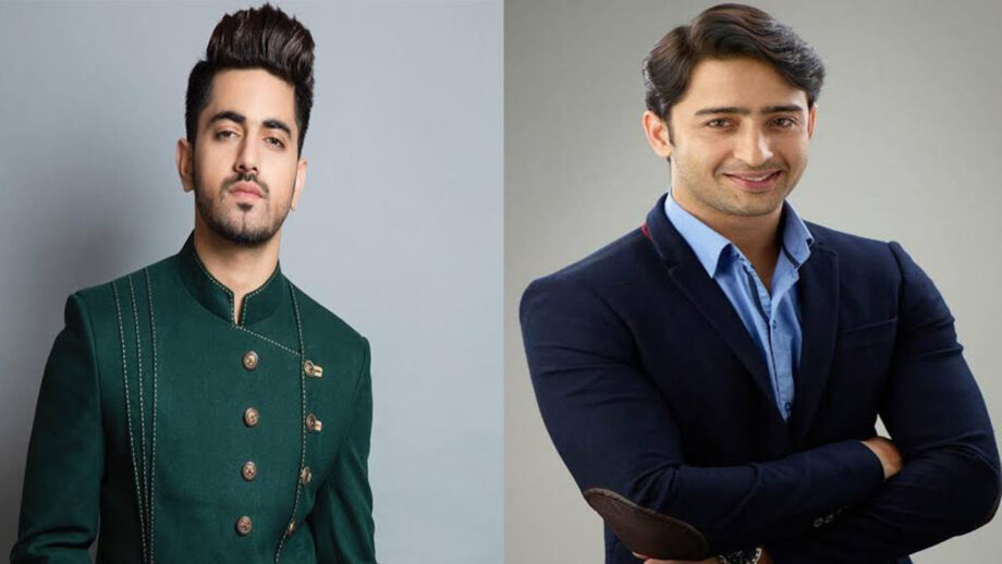 Zain Imam VS Shaheer Sheikh: The ultimate hunk of telly town