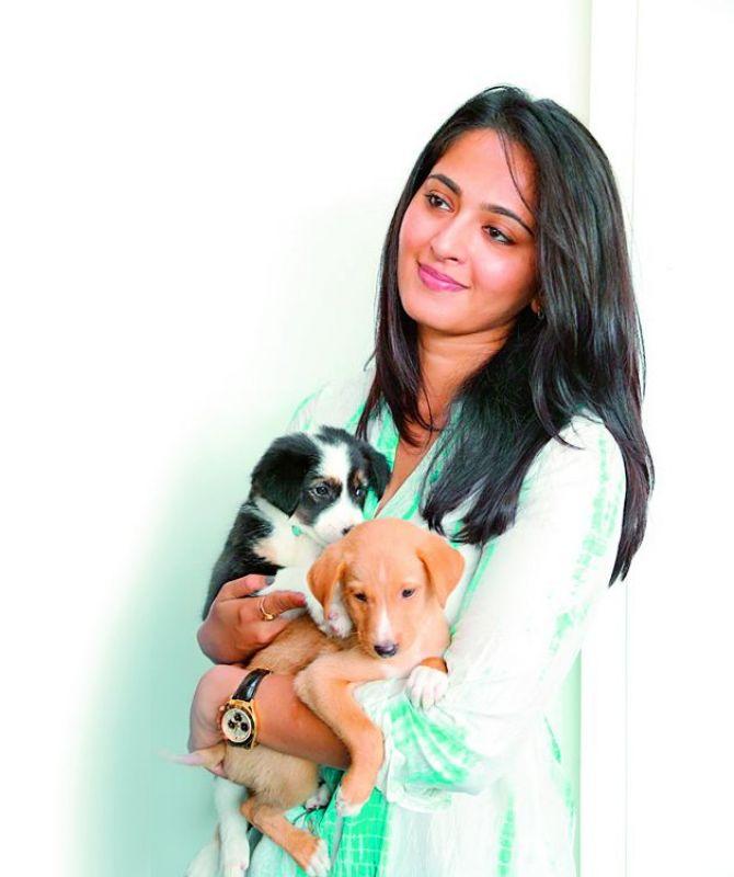 Anushka Shetty is an avid dog lover, here's proof 3