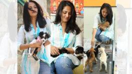 Anushka Shetty is an avid dog lover, here's proof