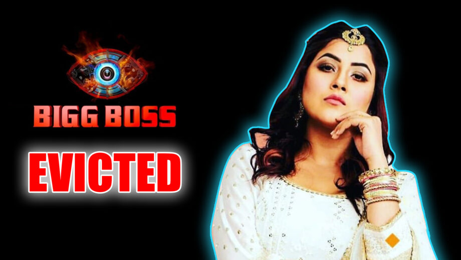 Bigg Boss 13: Paras Chhabra is out from the finale race  4