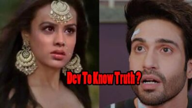 Naagin – Bhagya Ka Zehreela Khel: Dev to know of Brinda being a NAAGIN?