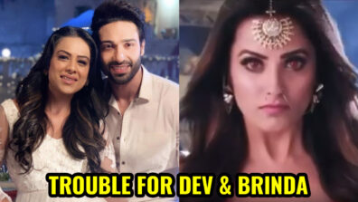 Naagin – Bhagya Ka Zehreela Khel: Vishakha succeeds in bringing rift between Dev and Brinda