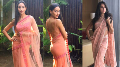 Nora Fatehi looks drop-dead gorgeous in saree 5