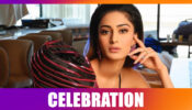 Kasautii Zindagii Kay fame Erica Fernandes' SPECIAL birthday celebration: Read to find out