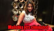 Khatron Ke Khiladi 10 Written Episode Update 21st March 2020: Malishka exits from the show