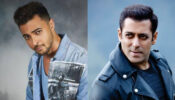 Salman Khan's attempt after attempt to make brother-in-law Ayush a superstar