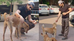 Here is what Kundali Bhagya actor Manit Joura doing for stray dogs during this COVID-19 Lockdown