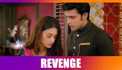 Kasautii Zindagii Kay: Prerna to get her revenge by KILLING Anurag?