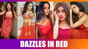 Munmun Dutta, Shrenu Parikh, Anita Hassanandani, Reem Shaikh, Jasmine Bhasin: The Blazing Beauty In Red
