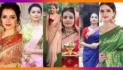 Shrenu Parikh's 7 Saree Looks That Are Super Stylish And Elegant!