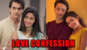 Yeh Rishta Kya Kehlata Hai's Kartik-Naira Vs Yeh Rishtey Hain Pyaar Ke's Abir-Mishti: Which couple's love confession won your heart?