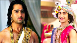 Shaheer Sheikh's Arjun VS Sumedh Mudgalkar's Krishn: Which Is Your Favourite Historical Character?