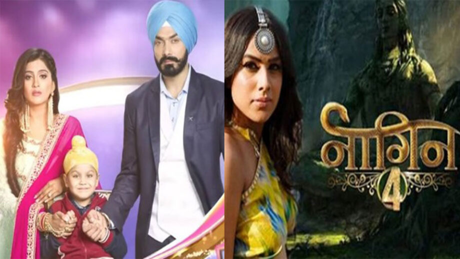 Choti Sarrdaarni Vs Naagin: Which Is Your Favourite Colors TV Show?