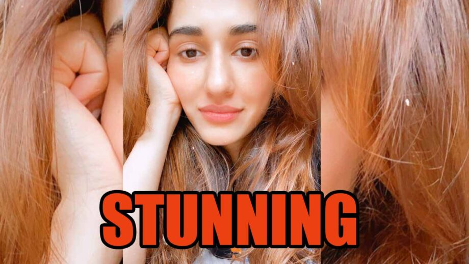 What Makes Disha Patani The Most Desirable Actress In Bollywood Iwmbuzz