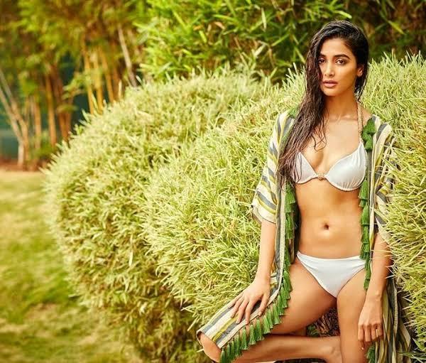 Anushka Sharma, Katrina Kaif And Pooja Hegde Sizzled And Oozed Hotness In Bikinis 7