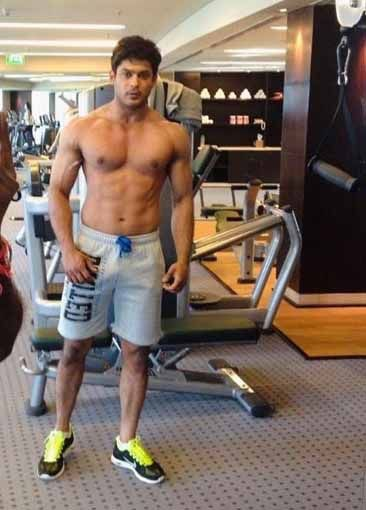 Aly Goni, Karan Singh Grover, Sidharth Shukla: Hot Guy In Gym 7