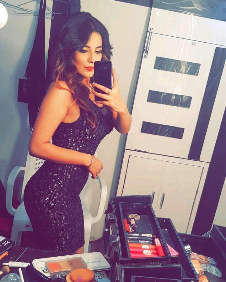 Shehnaaz Gill's Mirror Selfies Is An Inspiration For Ultimate Go-To Instagram Pics 5