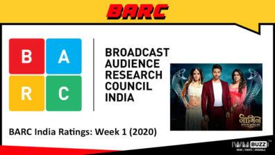 बी ए आर सी इंडिया रेटिंग्स: वीक 1 (2020); नागिन भाग्य का जहरीला खेल चार्ट में सबसे ऊपर है